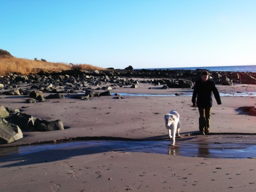 Hagrid and Mrs Rolling Eyeballs on Kildonan Beach, Isle of Arran, February 2013